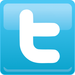 twitter logo png transparent background 1024x1024 300x300