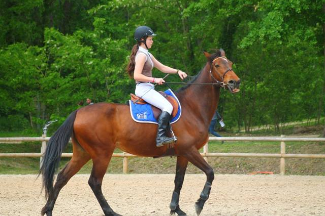 Equitation : Centre Equestre La Cravache - Le Poney Club